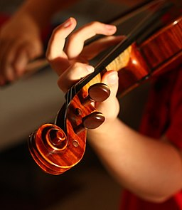 How To Choose a Violin – Your New Best Friend